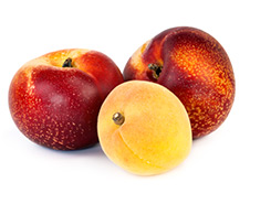 two nectarines and an apricot